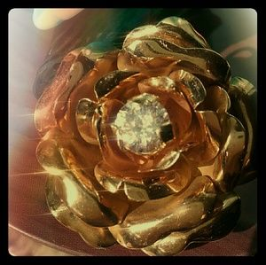 Jewelry - Absolutely stunning Roses Pin/Pendant